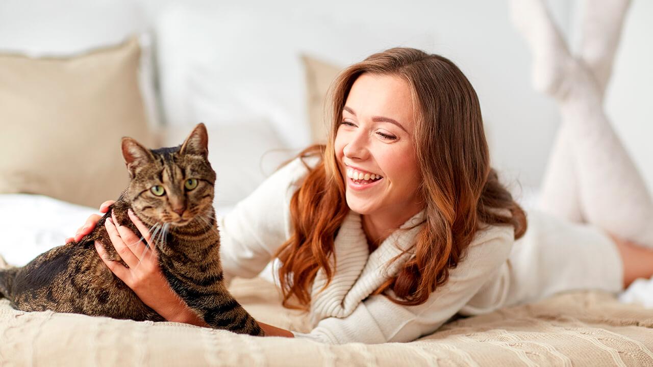 Salud y las mascotas