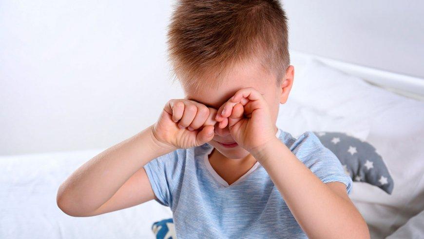 Conoce las enfermedades oculares generado por los parásitos de las mascotas